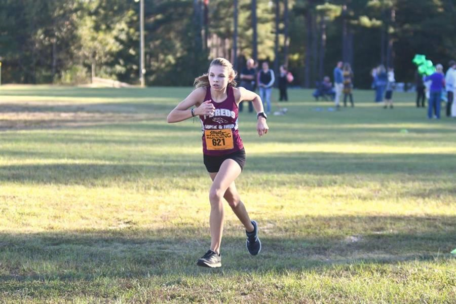 Six Area Runners Named to All-Aiken Standard Cross Country Teams